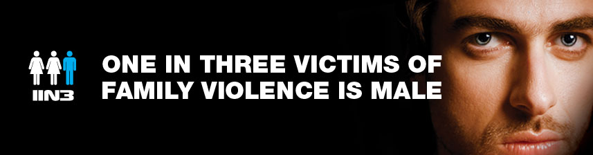 one in three dv victims